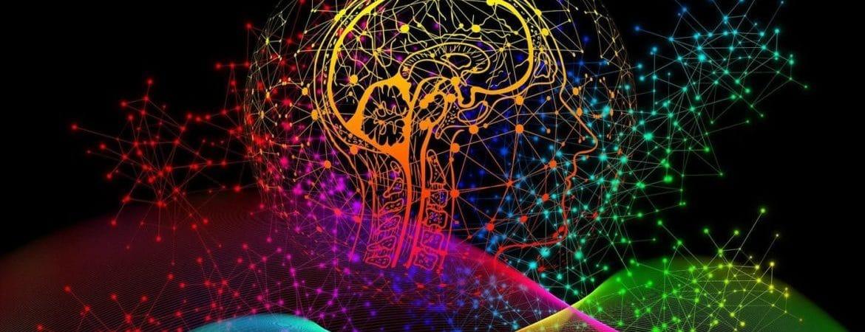 Brain_CBD_Memory